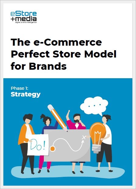 perfect store ebook cover